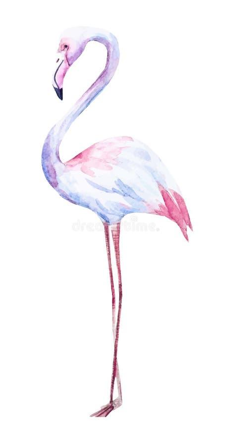 Trevlig vattenfärgflamingo royaltyfri illustrationer