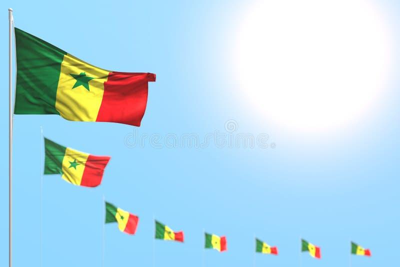 Trevligt förlade många Senegal flaggor diagonalt med den selektiva fokusen och tomt utrymme för ditt innehåll - någon beröm royaltyfri illustrationer