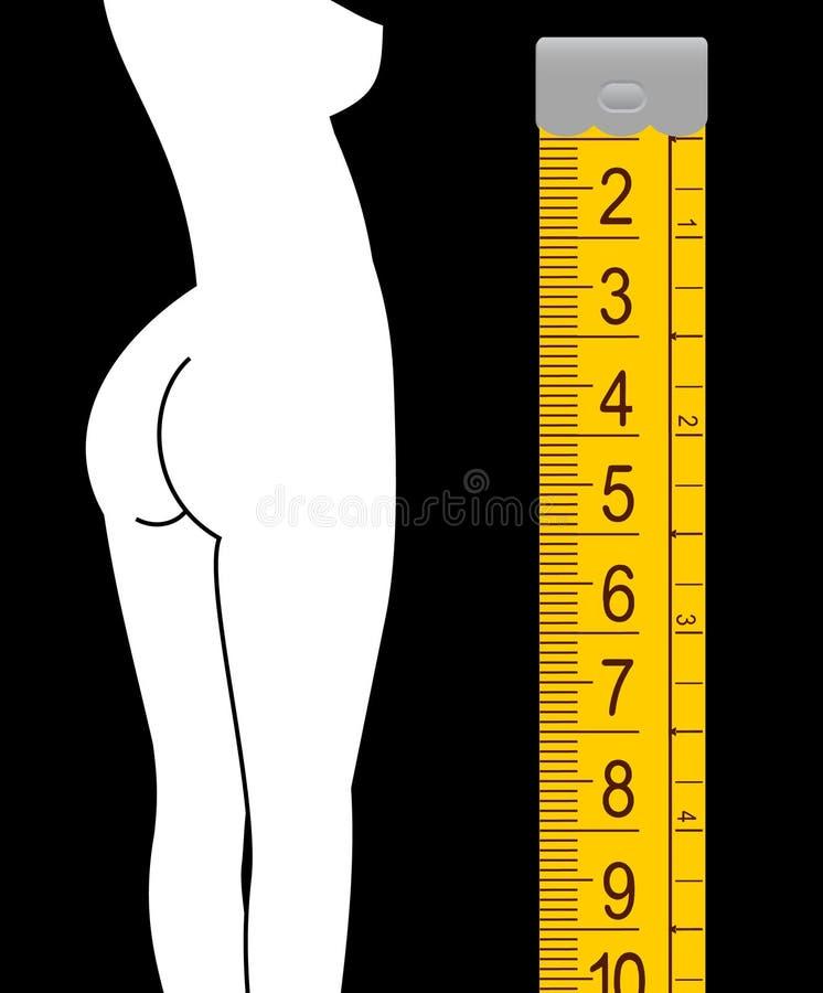 trevligt högväxt för flicka vektor illustrationer