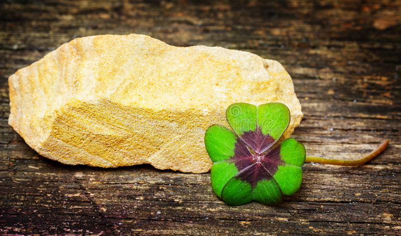 Trevo afortunado e pedra afortunada imagem de stock