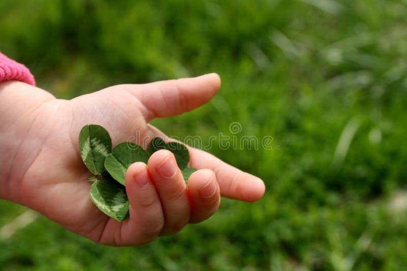 Trevo verde na m?o de uma crian?a pequena fotografia de stock royalty free