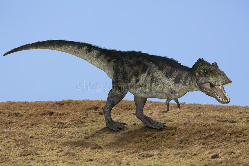 Trex dinosaurie royaltyfri fotografi