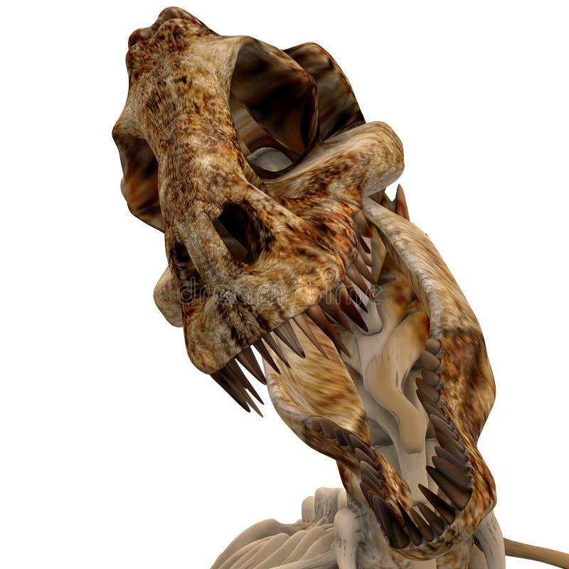 TRex Knochen - 04 lizenzfreie abbildung