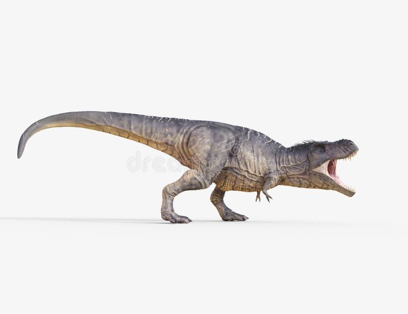 Trex white. 3d render dinosaur - trex white. This is a 3d render illustration royalty free illustration