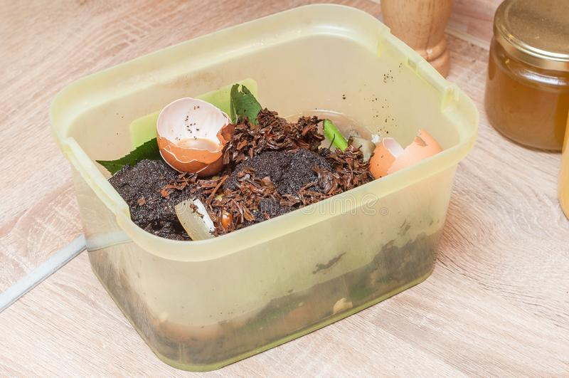 Tri du gaspillage organique de coquilles de poulet, marcs de café dans la cuisine pour l'engrais de jardin photo libre de droits