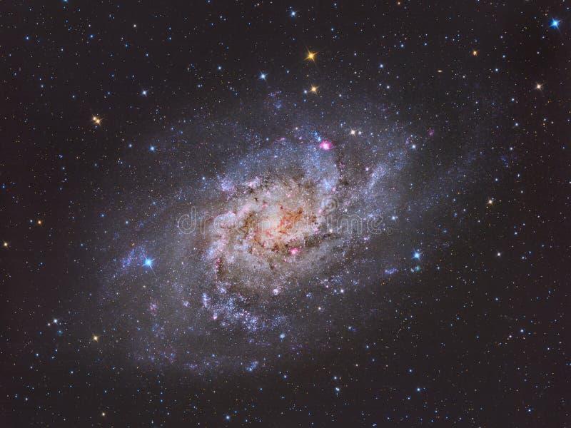 Triangulum Galaktyka M33 ilustracja wektor
