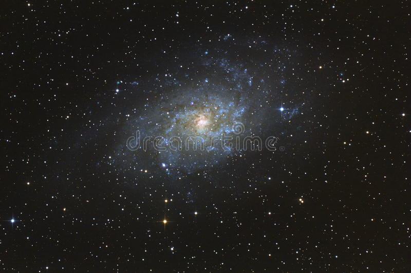 Triangulum galaxy stock image