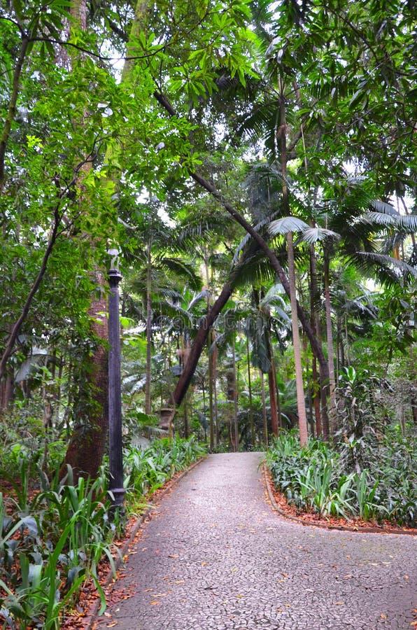 Trianon park na Paulista alei, Sao Paulo, Brazylia obraz stock