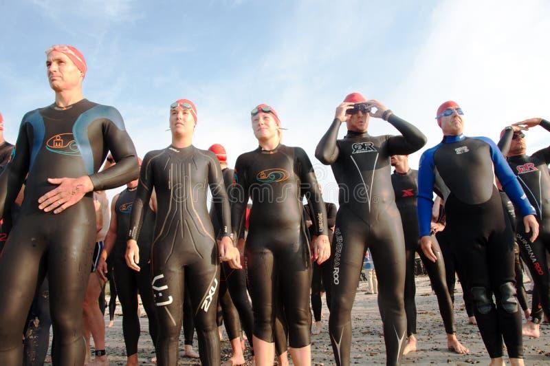 Triathlete Schwimmer an Anfangszeile stockbild