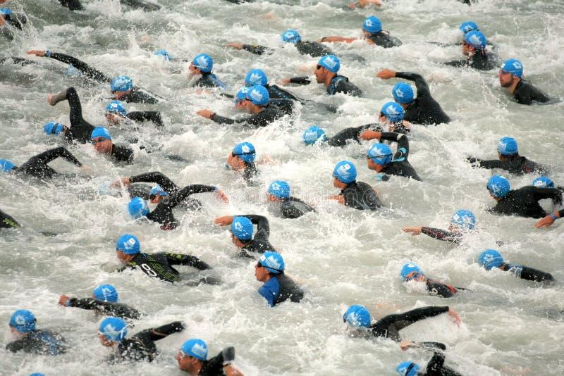 Triathletes sur le début images stock