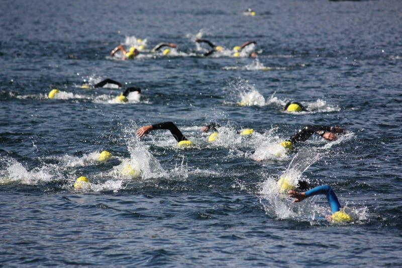 triathlon de nageurs photographie stock libre de droits