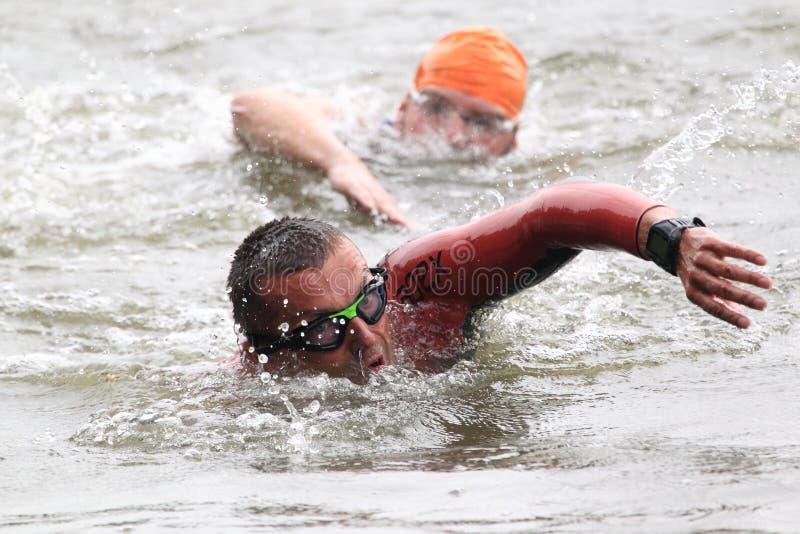 Triathlon 2012 de Praga - natación fotografía de archivo