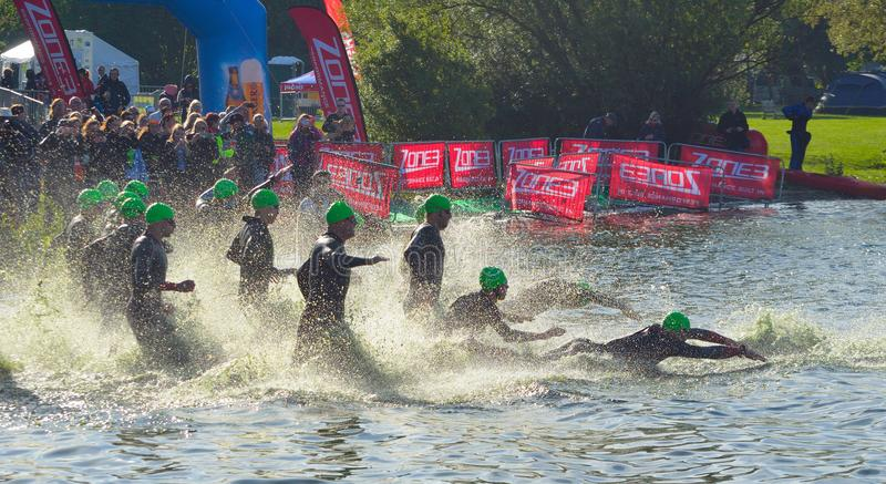 Triathlon swimmers entering open water swim stage. GRAFHAM, CAMBRIDGESHIRE, ENGLAND - MAY 21, 2017: Triathlon swimmers entering open water swim stage royalty free stock photography