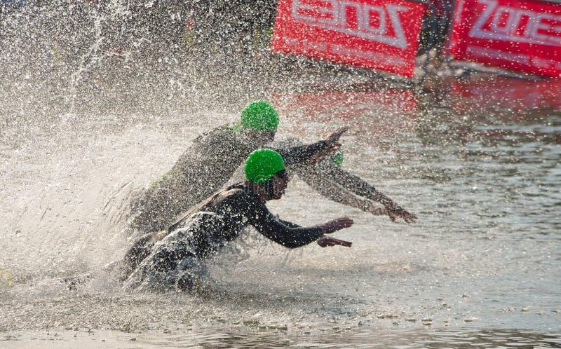 Triathlon swimmers entering open water swim stage. stock photo