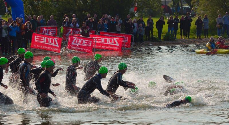 Triathlon swimmers entering open water swim stage. stock image