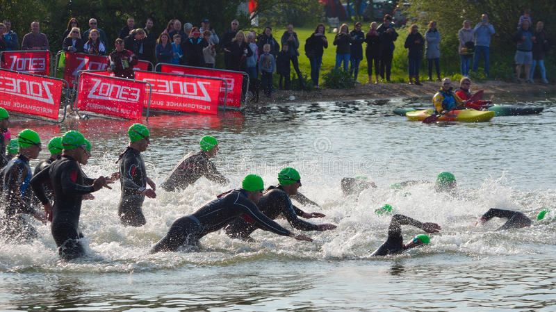Triathlon swimmers entering open water swim stage. stock photography