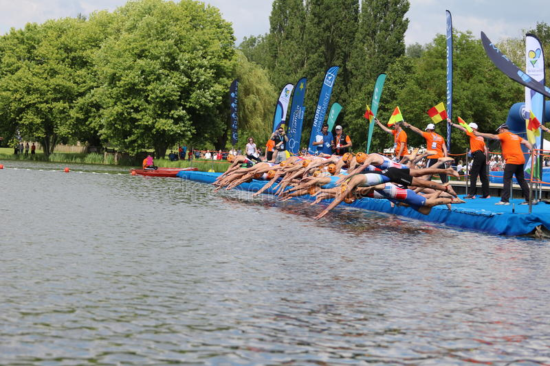 Triathlon triathletes sport healthy exercise swimming. Triathletes dive into the water from a pontoon at the start of the swim leg at the European Triathlon stock photo