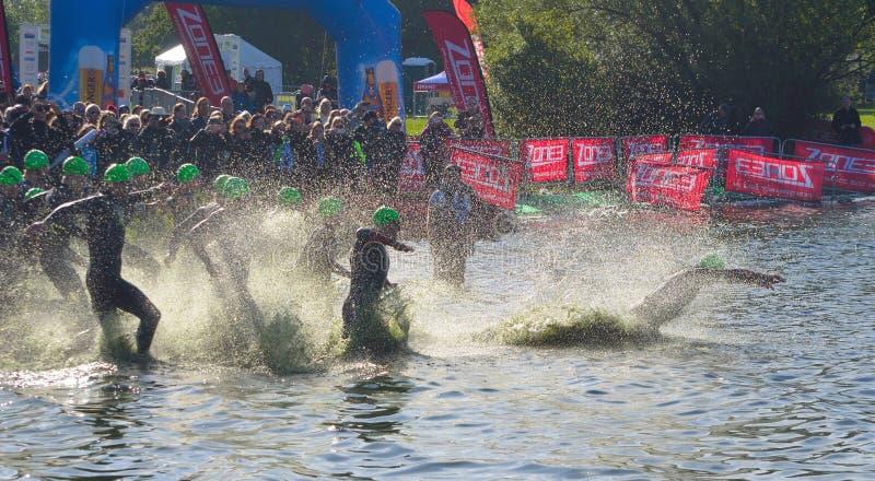 Triathlonsimmare som skriver in badetappen för öppet vatten arkivbild