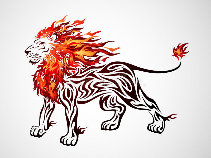 Tribal Fire Lion. Illustration of a fire lion in tribal tattoo style stock illustration