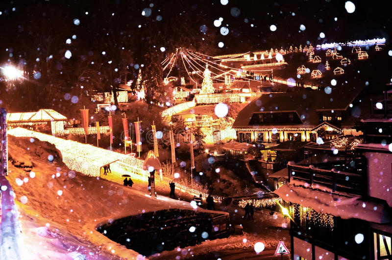 Triberg冬天雪 免版税库存照片
