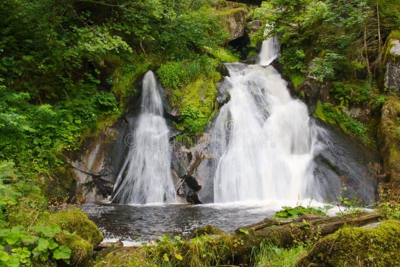 Triberg waterfalls, Germany royalty free stock photo