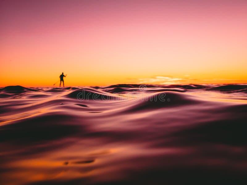 Tribune op peddel die in oceaan met mooie zonsondergang of zonsopgangkleuren surfen royalty-vrije stock afbeelding