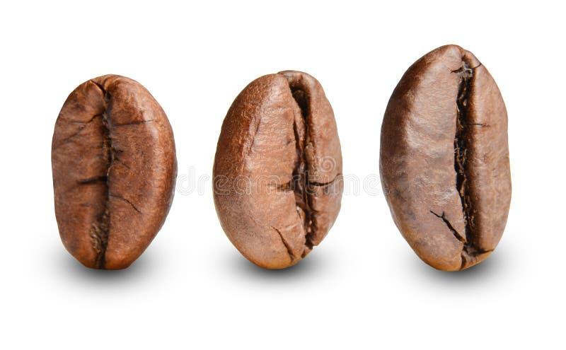 Tribune van drie de geroosterde koffiebonen rechtop Macro Witte geïsoleerde achtergrond stock foto