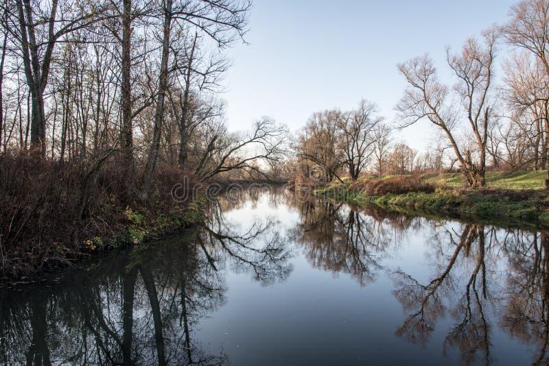 Tributario del fiume di Stonavka e di Olse in repubblica Ceca durante il bello giorno di autunno con il chiaro cielo fotografia stock libera da diritti