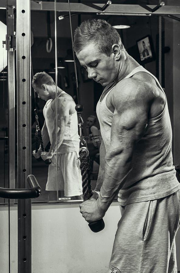 Triceps ćwiczenie obraz stock