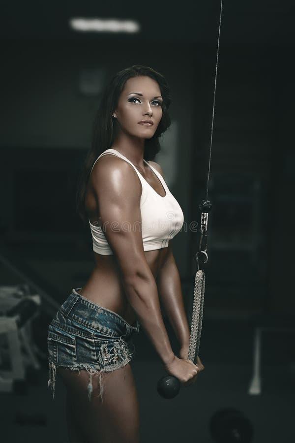 Download Triceps Training On Gym Machine Stock Image - Image: 34050873