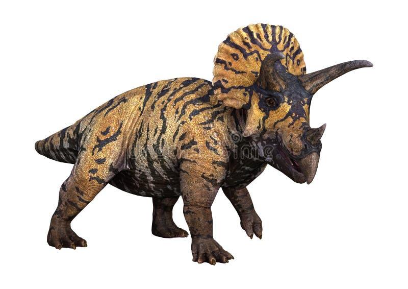 triceratopo del dinosauro della rappresentazione 3D su bianco illustrazione vettoriale