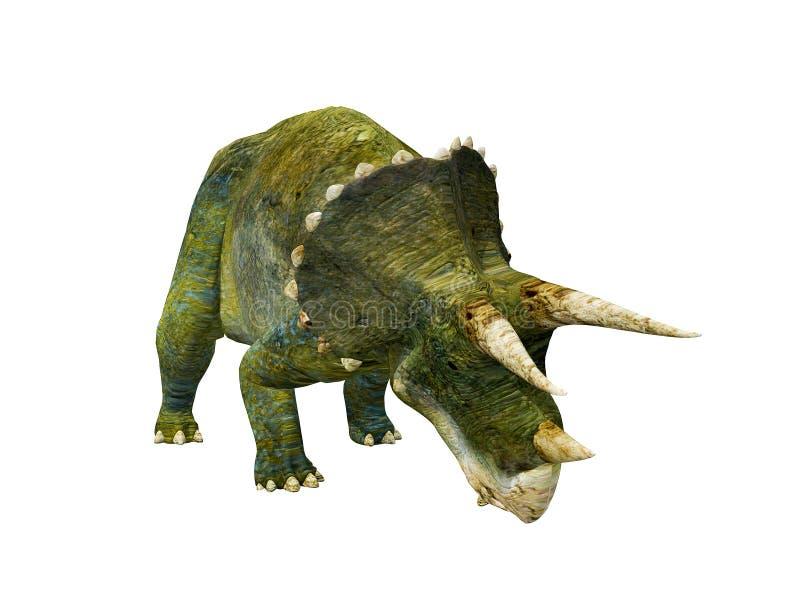 Download Triceratops stock illustration. Illustration of brontosaurus - 13797132