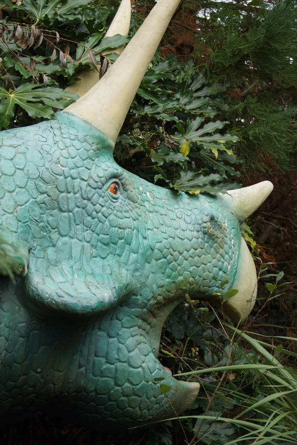 triceratops royaltyfri foto