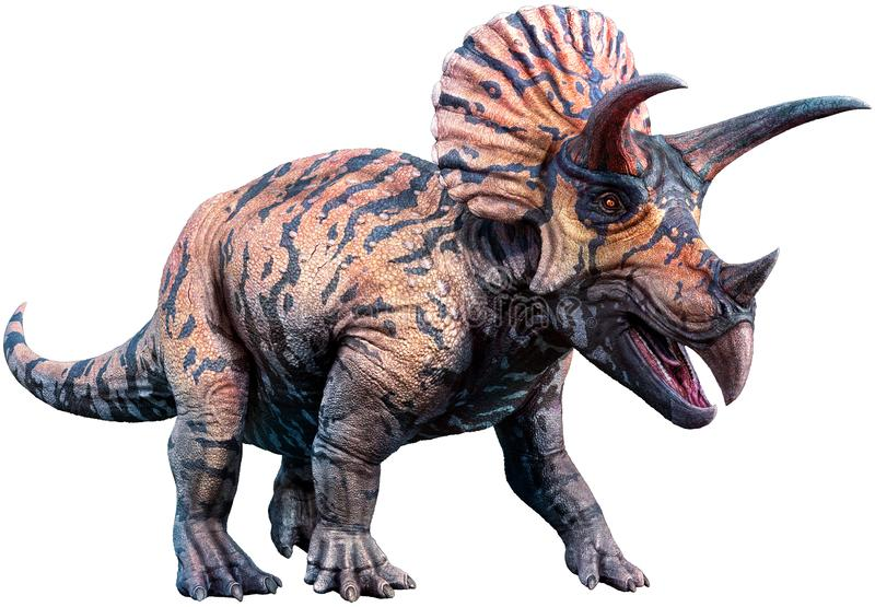 Triceratops 3D illustration. Triceratops from the Cretaceous era 3D illustration stock illustration