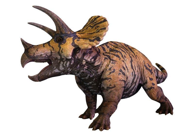 Triceratops del dinosaurio de la representación 3D en blanco ilustración del vector