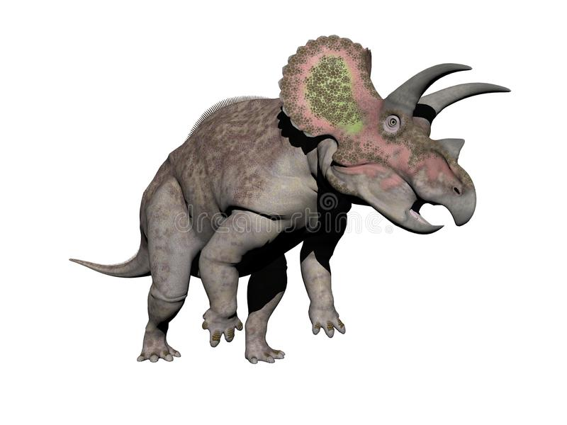Triceratops dinosaur - 3d render stock illustration