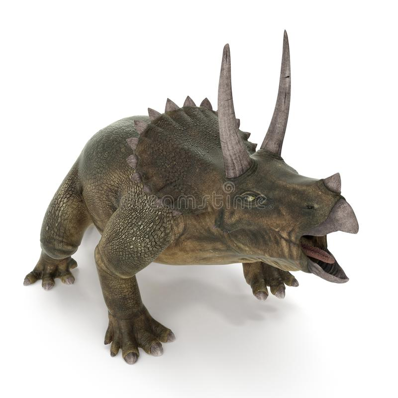 Triceratops dinosaur on white. 3D illustration. Triceratops dinosaur on white background. 3D illustration vector illustration
