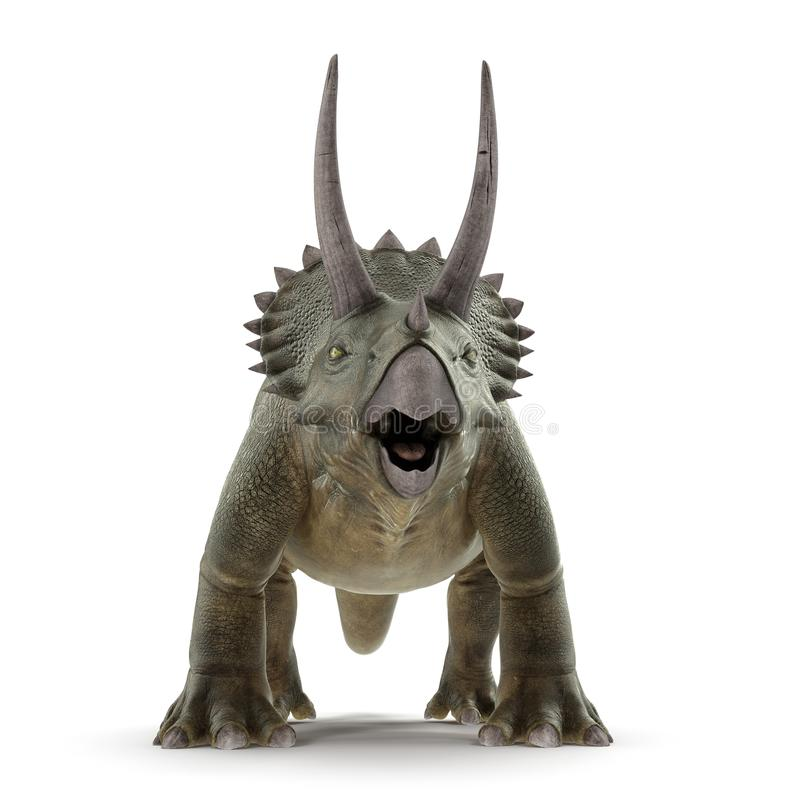 Triceratops dinosaur on white. Front view. 3D illustration. Triceratops dinosaur on white background. Front view. 3D illustration royalty free illustration