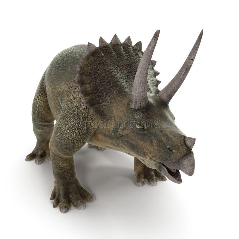 Triceratops dinosaur on white. 3D illustration. Triceratops dinosaur on white background. 3D illustration stock illustration