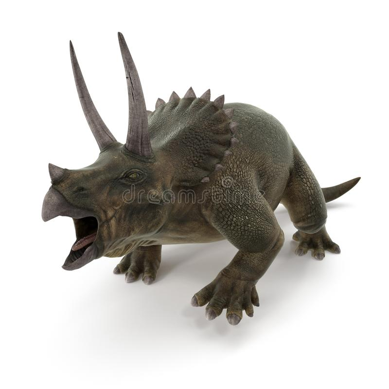 Triceratops dinosaur on white. 3D illustration royalty free illustration