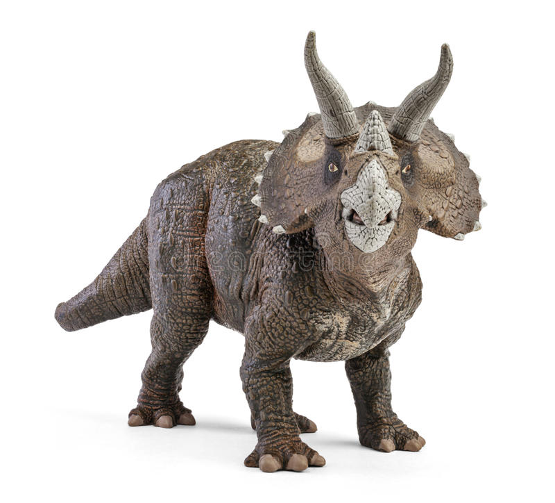 Triceratops dinosaurieleksak för främre sikt som isoleras på vit bakgrund med den snabba banan fotografering för bildbyråer