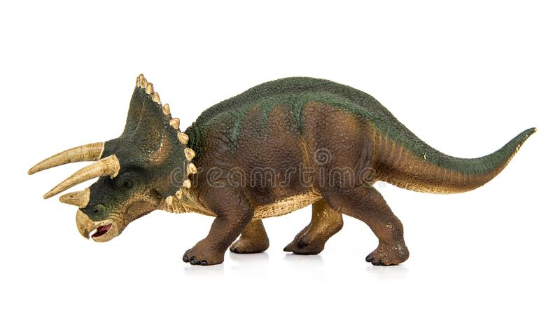 Triceratops dinosaurs herbivores. Triceratops Living dinosaurs In Late Cretaceous. Dinosaur herbivores have him 3 on his head. isolated on white background royalty free illustration