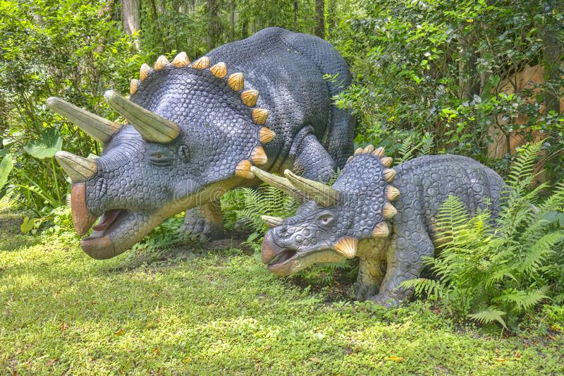 Triceratops Dinosaurs. Replicas of a pair of Triceratops dinosaurs, located at the first of three jurassic themed parks in the USA, Plant City, Florida stock images