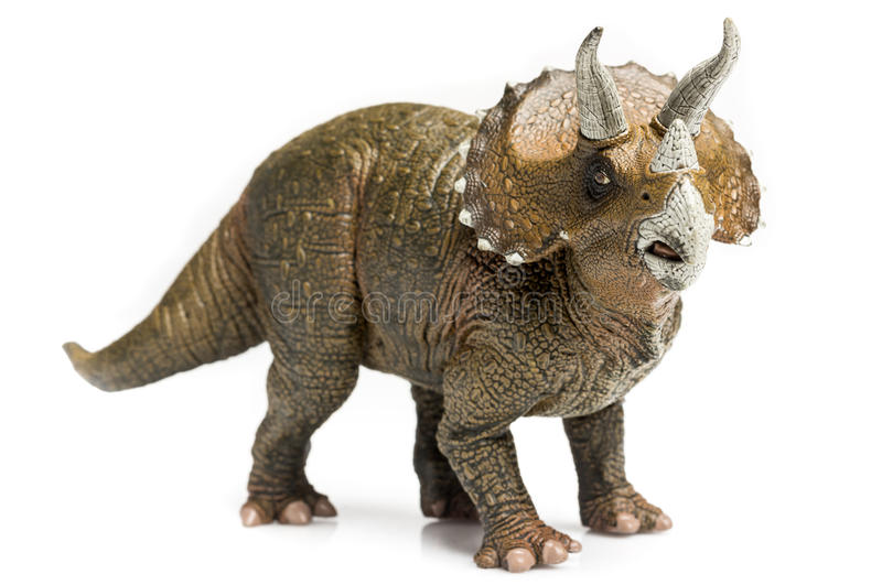 Triceratops. Figurine on white background royalty free stock photos