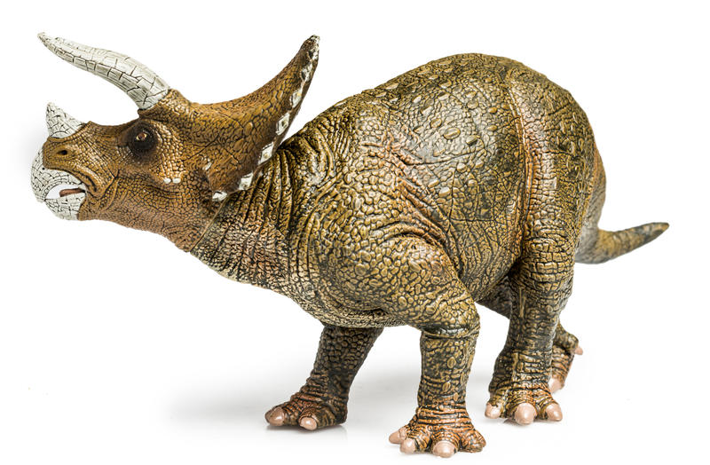 Triceratops. Figurine on white background stock images