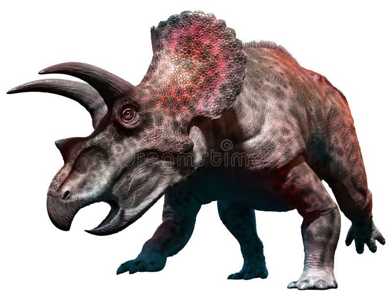 Triceratops vector illustration