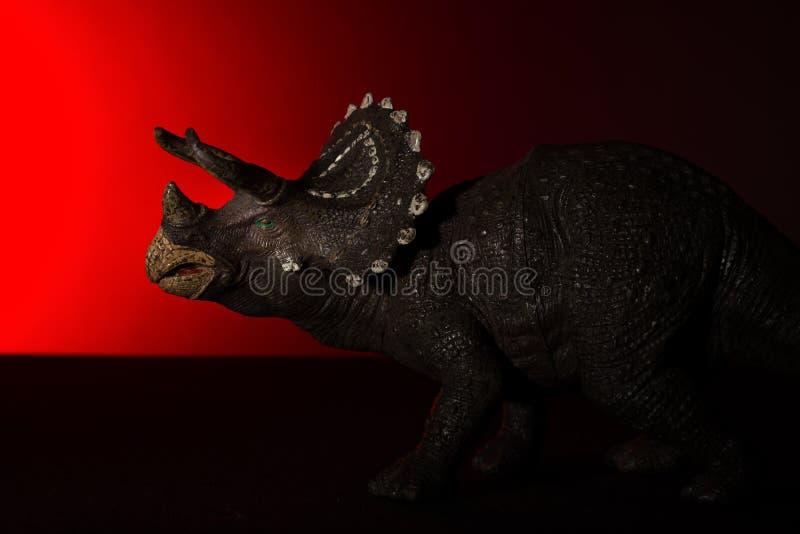 Triceratops med fläckljus på huvudet och röda ljuset på backgro arkivbild
