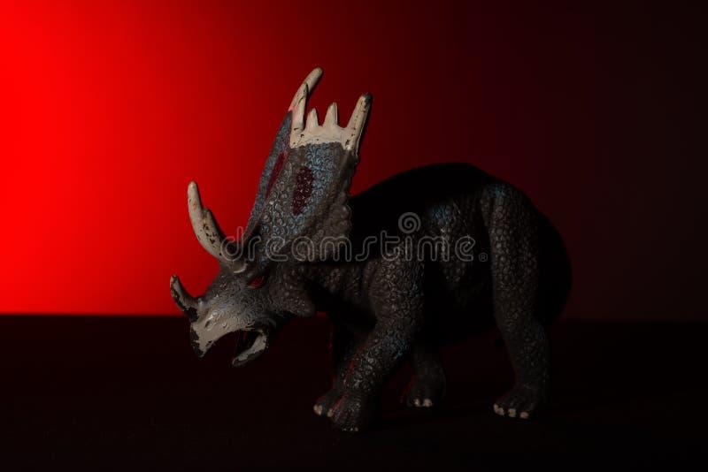 Triceratops med fläckljus på huvudet och röda ljuset på bakgrund fotografering för bildbyråer