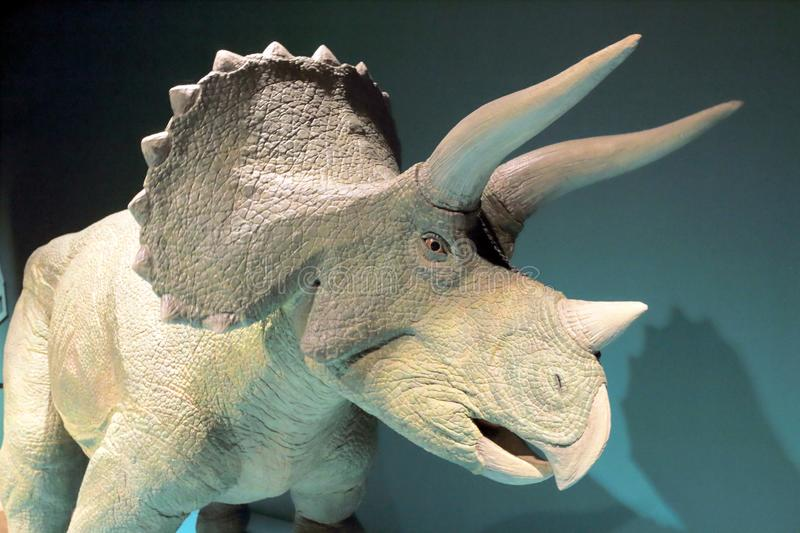 Triceratops. The Model of the Triceratops royalty free stock image