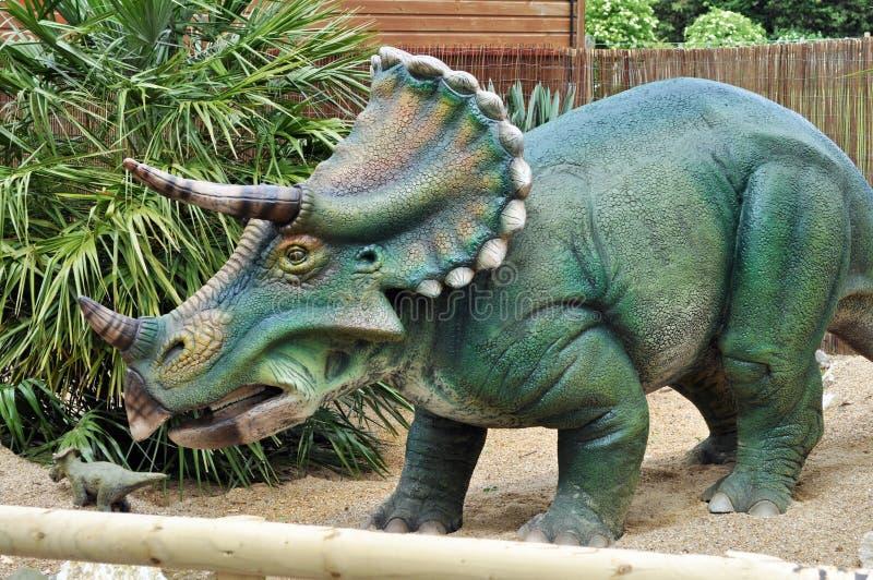 Triceratops modeldinosaurus royalty-vrije stock afbeeldingen